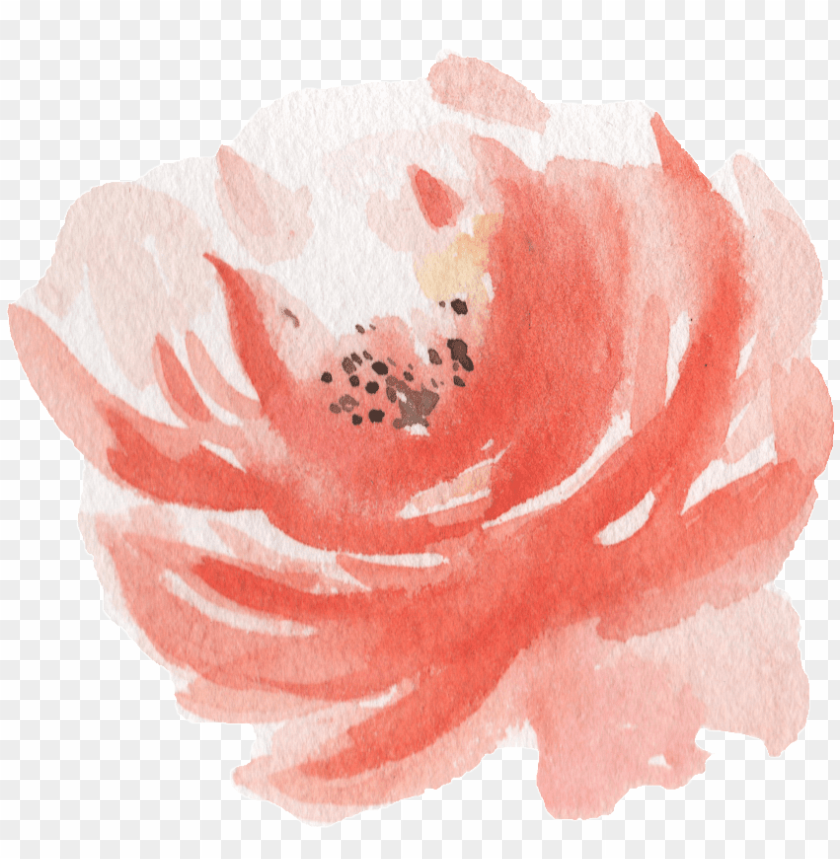 free PNG ink watercolor hand painted flowers transparent - watercolor painti PNG image with transparent background PNG images transparent