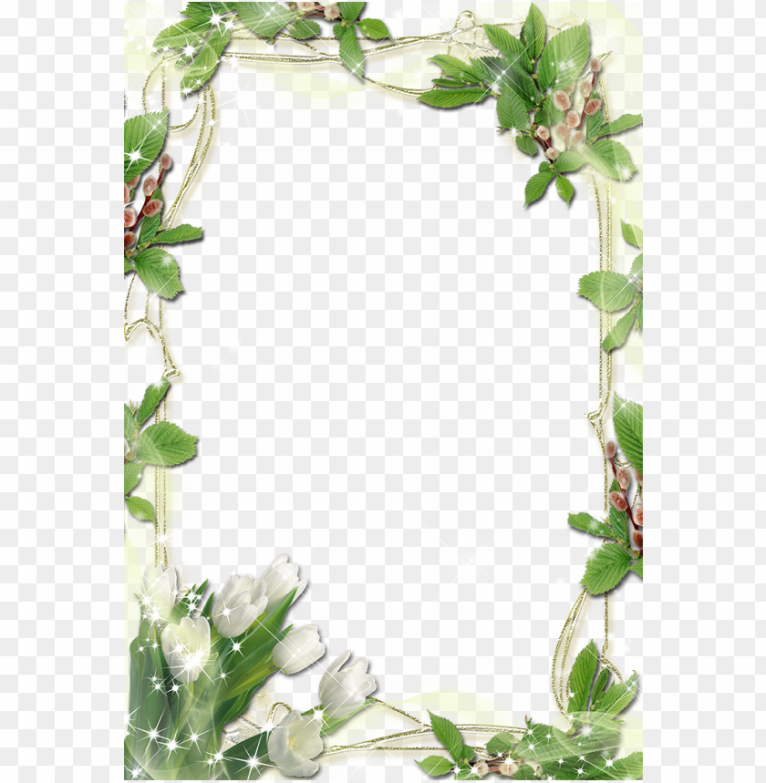 free PNG international plant womens day mothers free download - mothers day frame PNG image with transparent background PNG images transparent