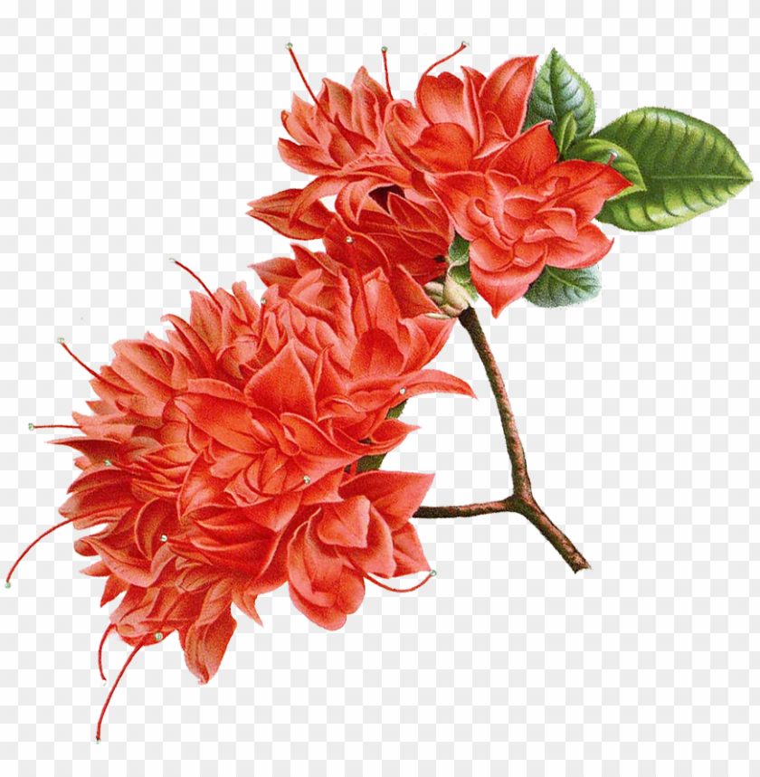 free PNG it - artificial flower PNG image with transparent background PNG images transparent