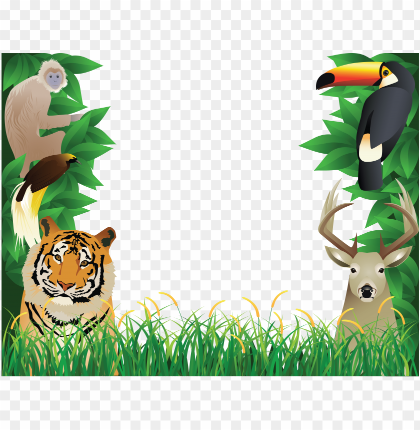 free PNG jungle animal background clipart - animal photo frame hd PNG image with transparent background PNG images transparent