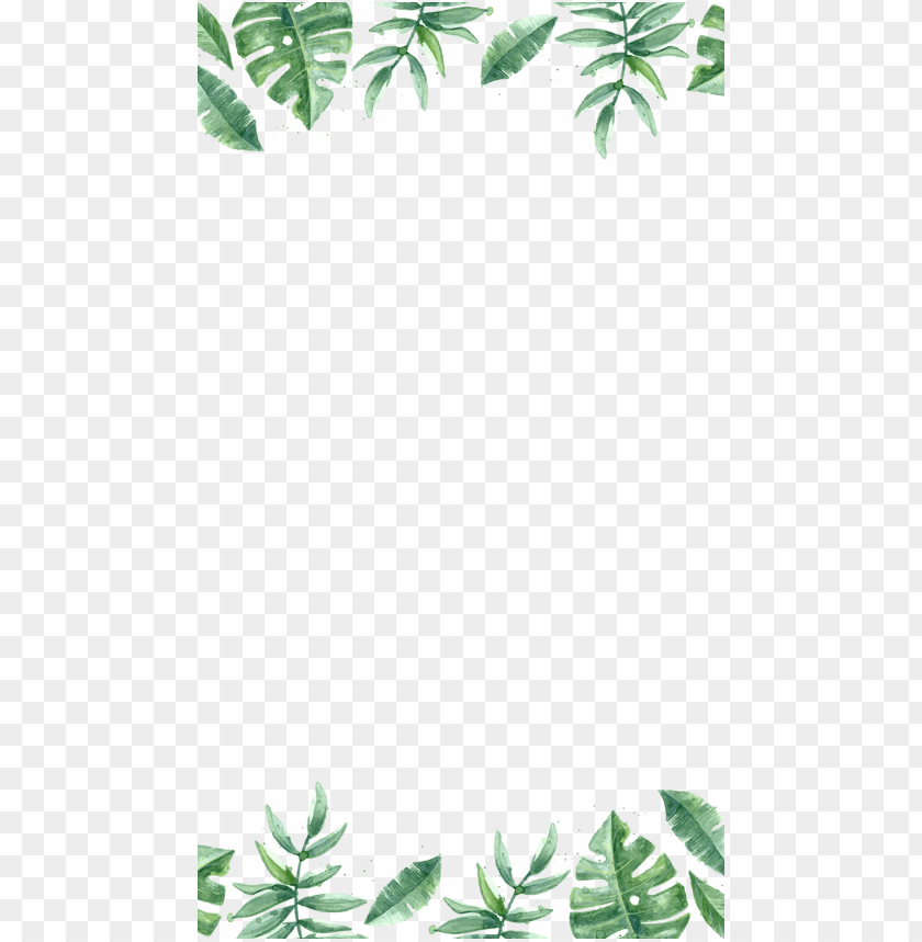 free PNG jungle border png - keep going and keep growi PNG image with transparent background PNG images transparent