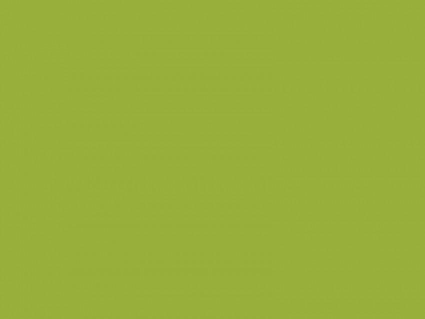 free PNG khaki, color, background, monochrome, minimalism, green background PNG images transparent