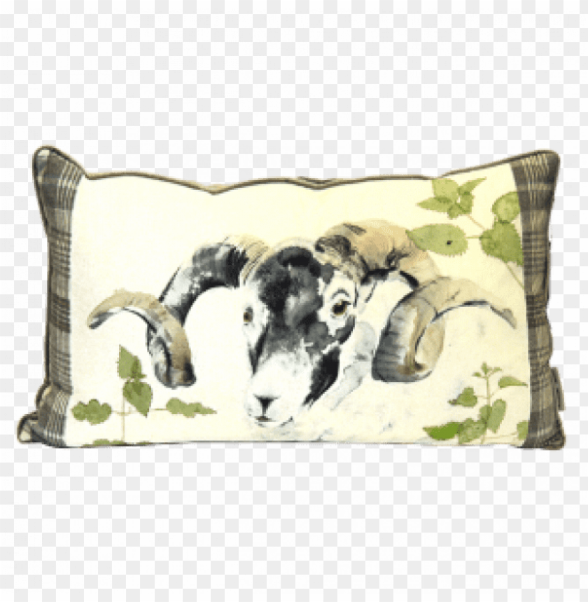 free PNG kilburn & scott ram watercolour cushion in size PNG image with transparent background PNG images transparent