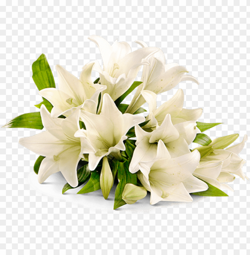 free PNG lace - rest in peace flower PNG image with transparent background PNG images transparent