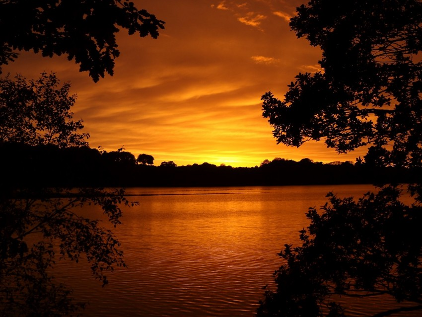free PNG lake, tree, sunset, branches, horizon, sky, landscape background PNG images transparent