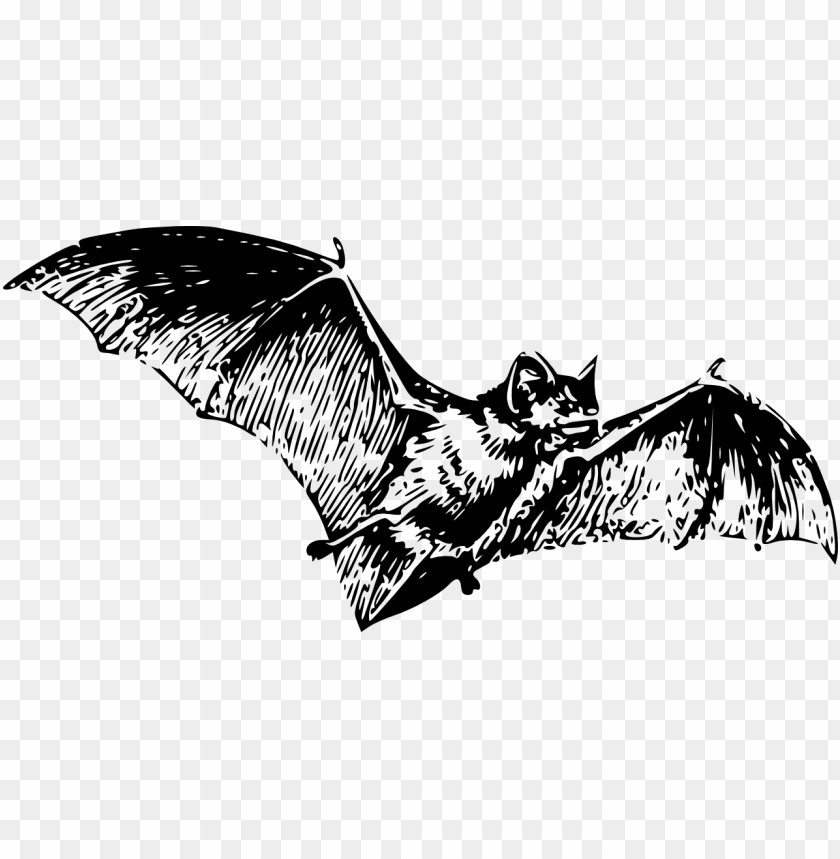 Large Bat Tattoo Png Image With Transparent Background Toppng