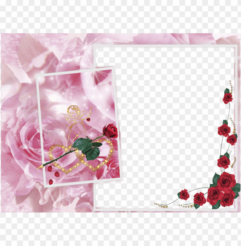 free PNG large transparent frame roses and angel background best stock photos PNG images transparent