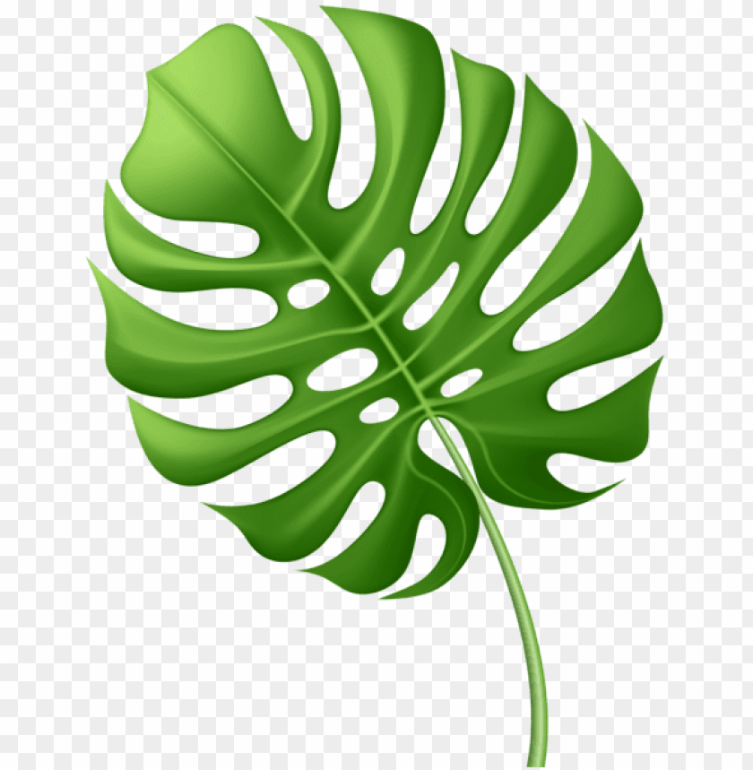 Free Leaf Graphic, Download Free Clip Art, Free Clip Art on Clipart Library