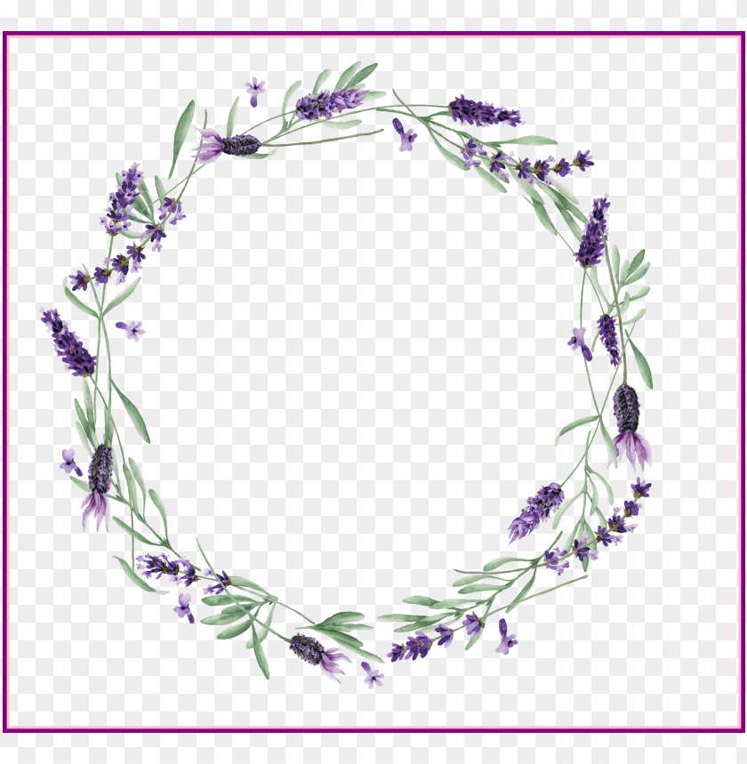 free PNG lavender vector royalty free stock huge - lavendar wreath transparent PNG image with transparent background PNG images transparent