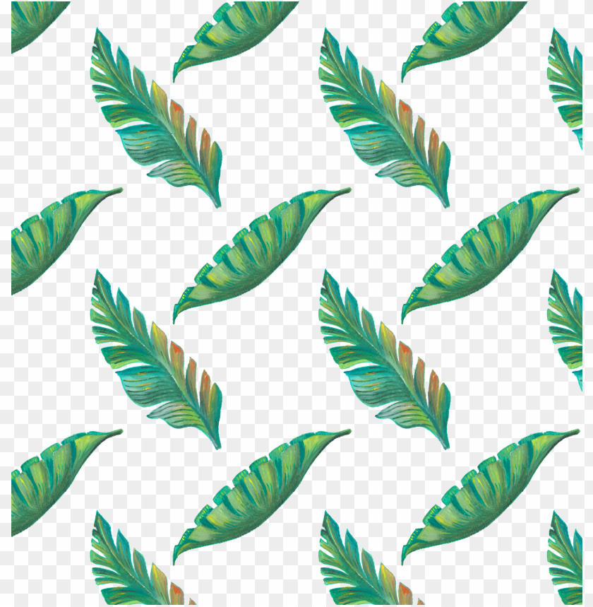 Leaf Tropics Drawing Tropical Leaves Pattern Png Image With Transparent Background Toppng