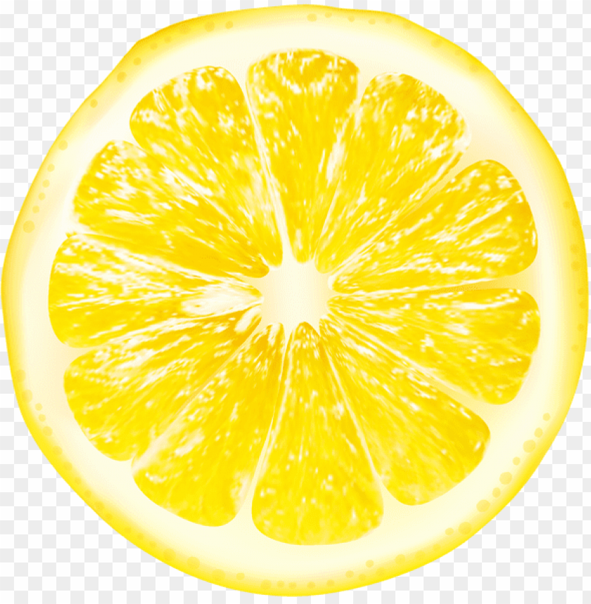 lemon slices png - Free PNG Images@toppng.com