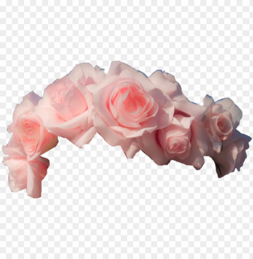 free PNG light pink roses flower crown transpa png image 218 - pink flower crown transparent PNG image with transparent background PNG images transparent