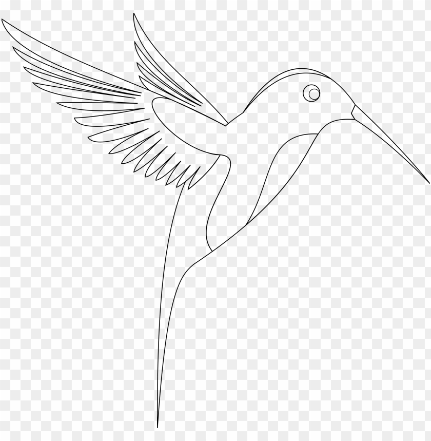 free PNG line art of birds PNG image with transparent background PNG images transparent