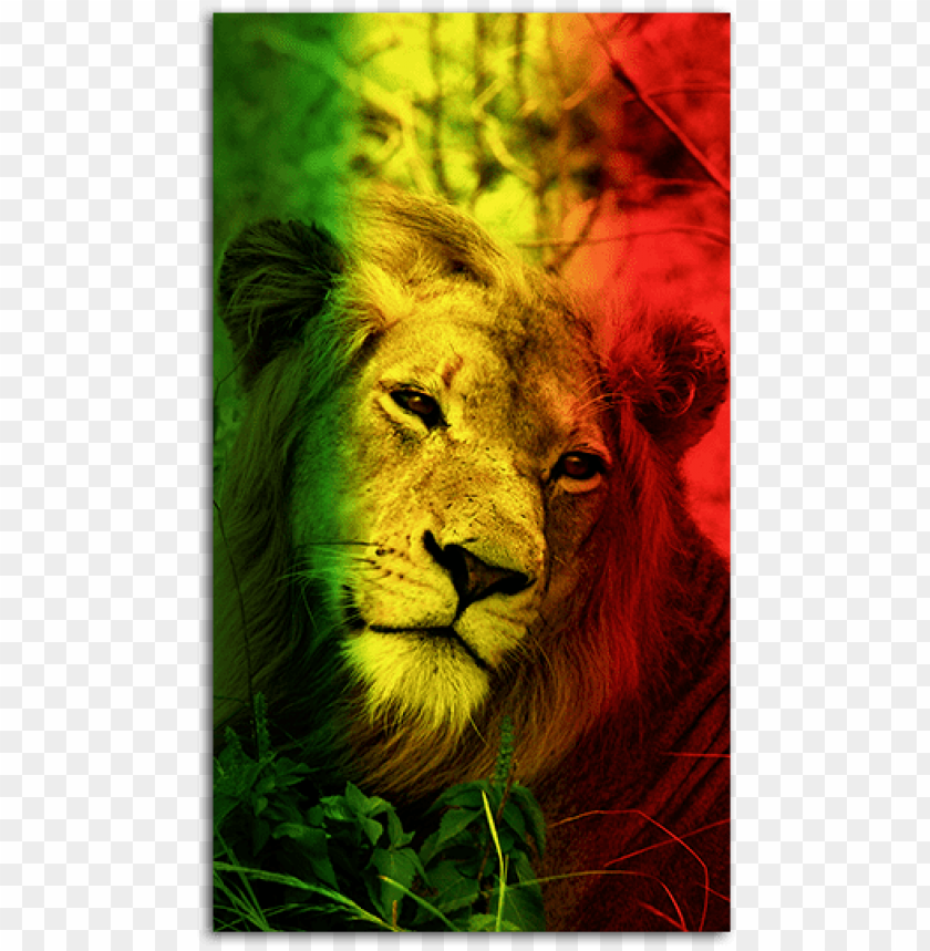Lion Mobile Wallpaper Hd Png Image With Transparent Background Toppng