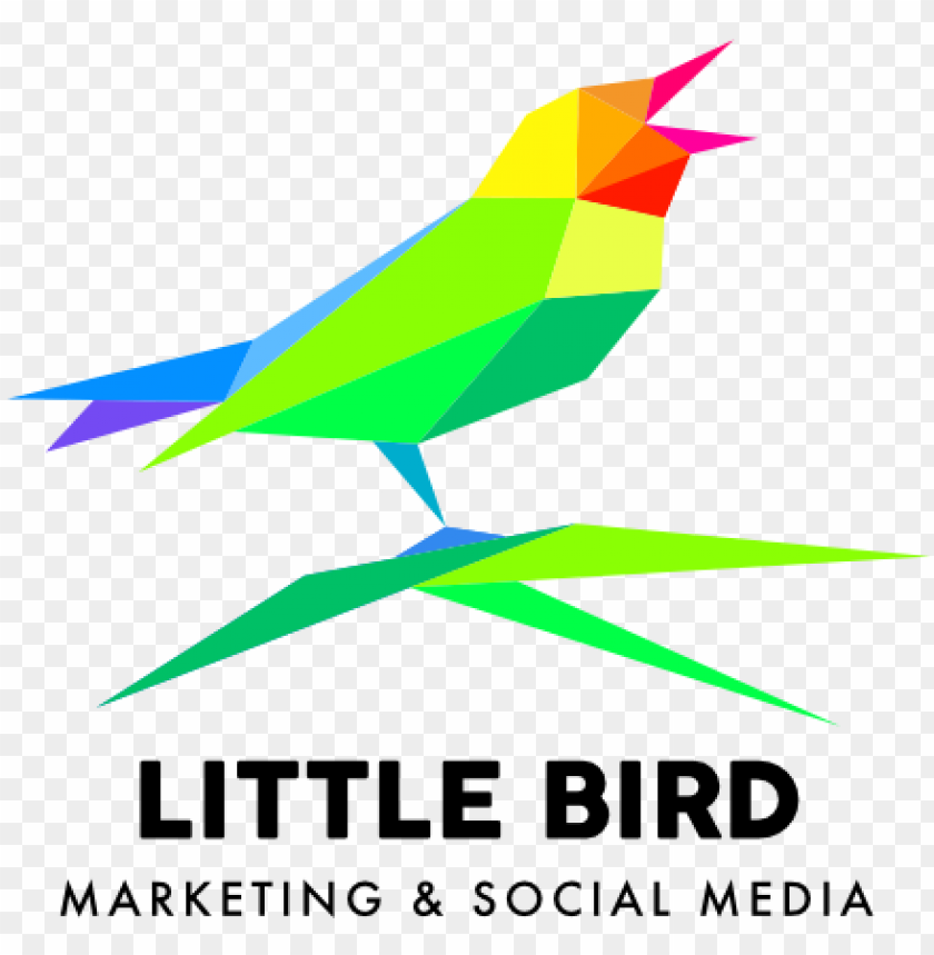 free PNG little bird affordable websites for small businesses - dolori del giovane walter PNG image with transparent background PNG images transparent