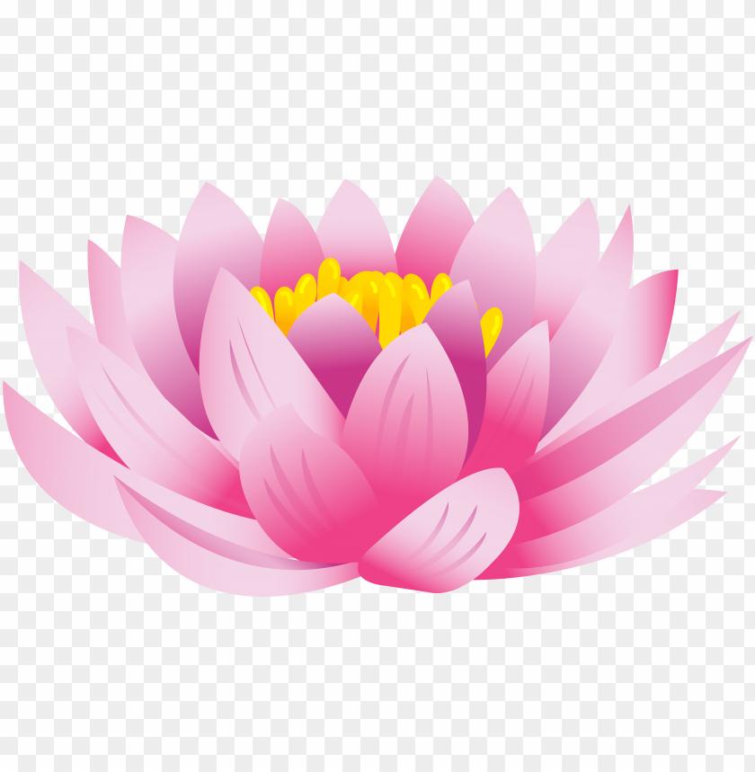 free PNG lotus flower png clip art image - lotus flower png free PNG image with transparent background PNG images transparent
