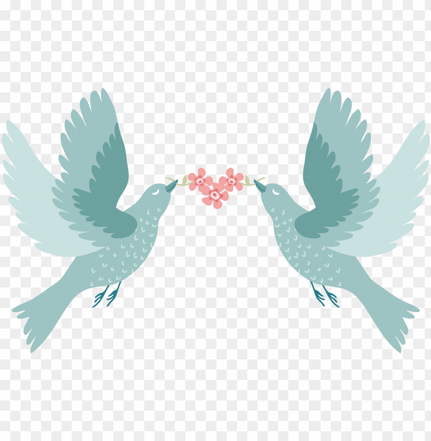 free PNG love birds for wedding PNG image with transparent background PNG images transparent