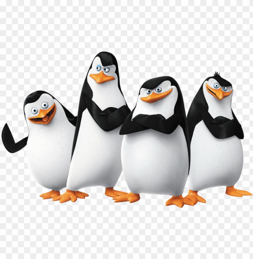 free PNG madagascar penguins png - penguins of madagascar j PNG image with transparent background PNG images transparent