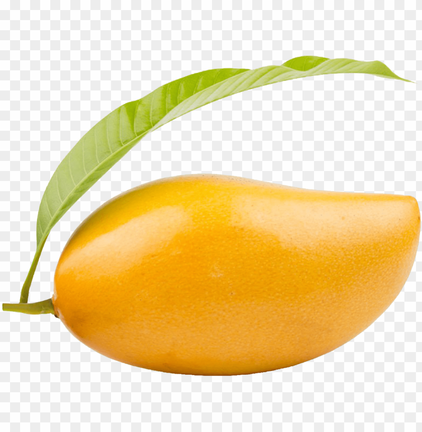 free PNG mango png clipart - ripe mango PNG image with transparent background PNG images transparent