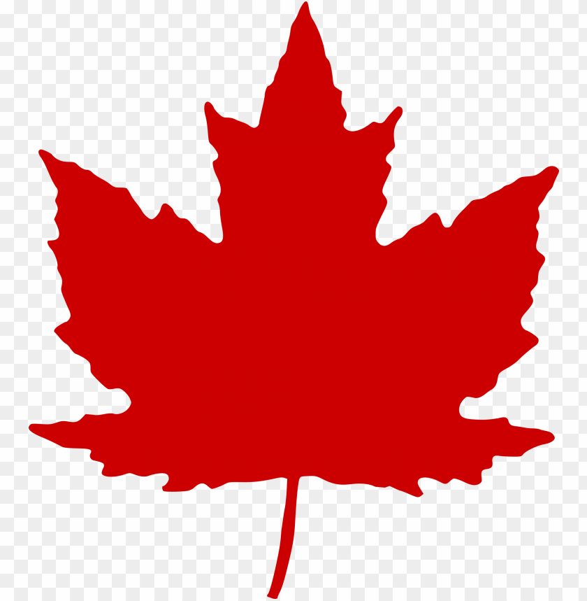 free PNG maple leaf - canadian maple leaf PNG image with transparent background PNG images transparent