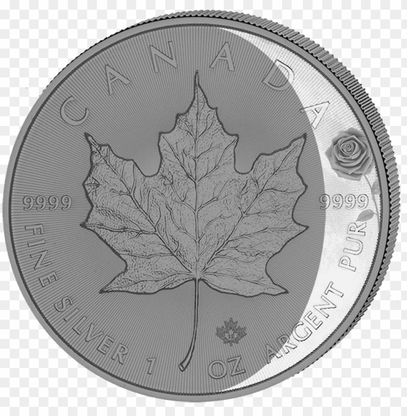 "free PNG maple leaf ""moon phases"" 4 seasons silver coins set - coi PNG image with transparent background PNG images transparent"