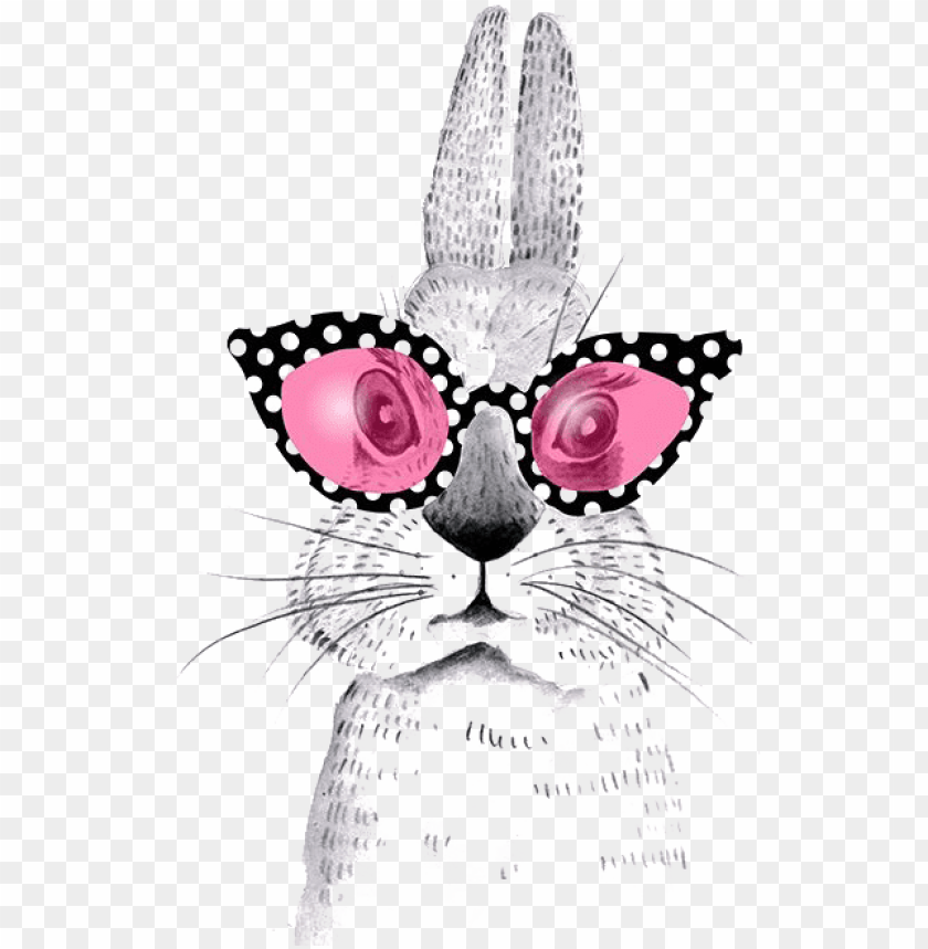 March Holland Hare Cartoon Lop Rabbit Easter Clipart Dessin Lapin Avec Lunettes Png Image With Transparent Background Toppng