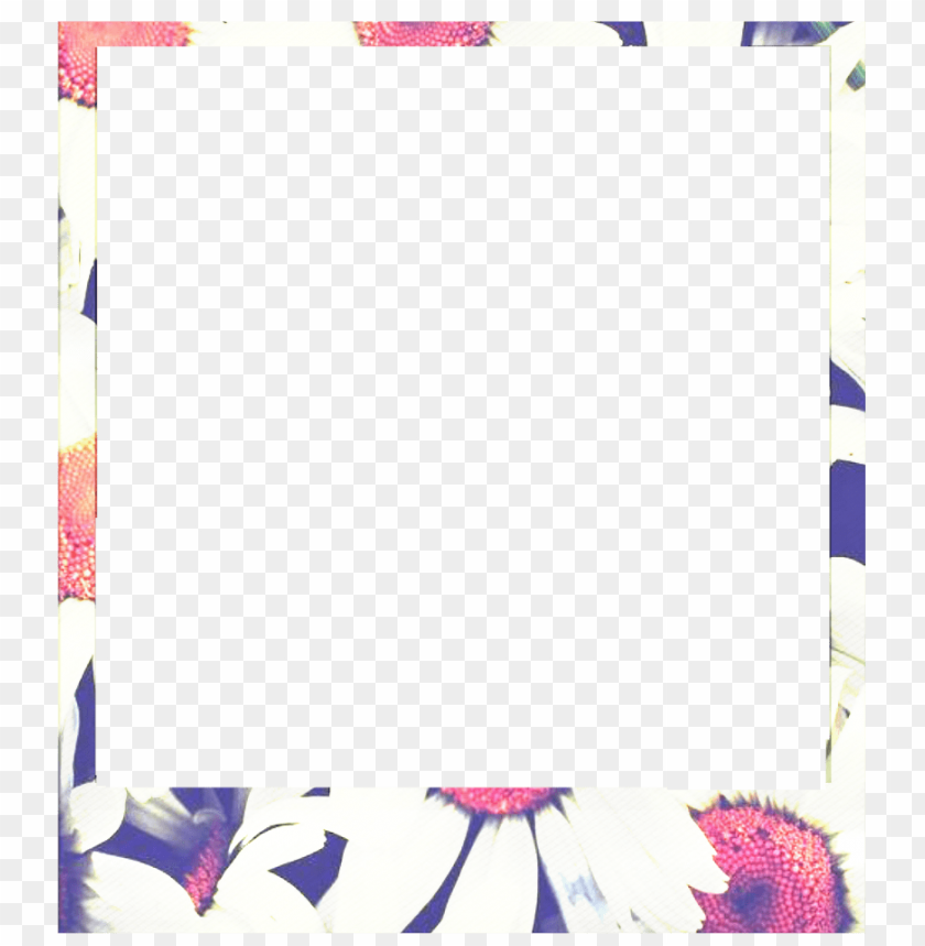 free PNG marco polaroid vintage PNG image with transparent background PNG images transparent