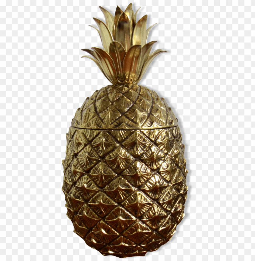 free PNG mauro manetti, ice, golden pineapple bucket - bucket PNG image with transparent background PNG images transparent