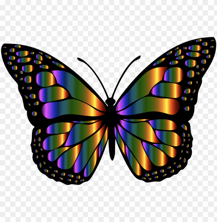 free PNG medium image - monarch butterfly butterfly clip art PNG image with transparent background PNG images transparent