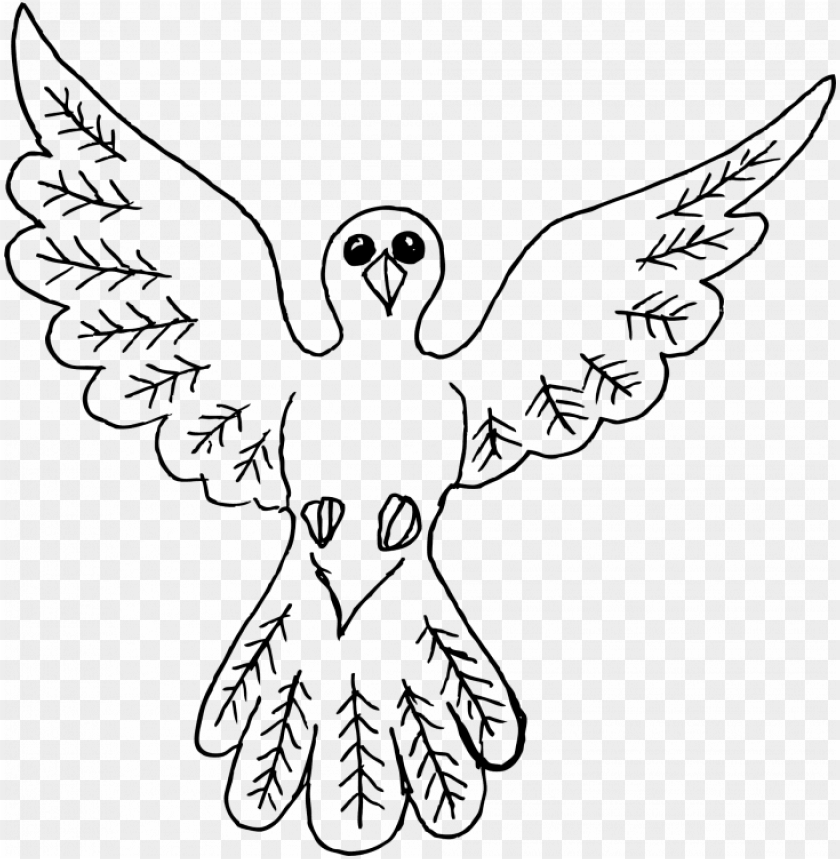 free PNG medium size of cool simple drawings tumblr and drawing - dove bird drawing outline PNG image with transparent background PNG images transparent