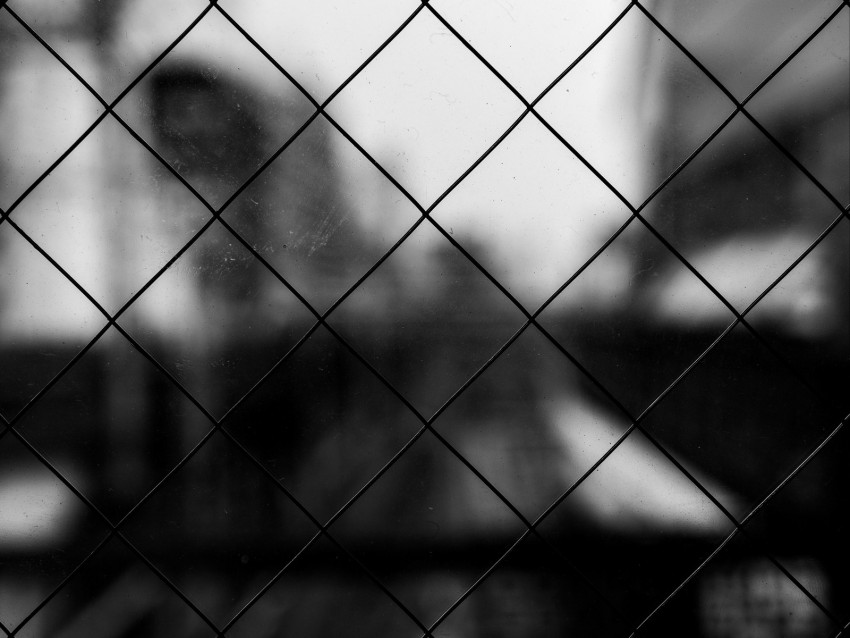 Mesh Cells Bw Blur Background Toppng
