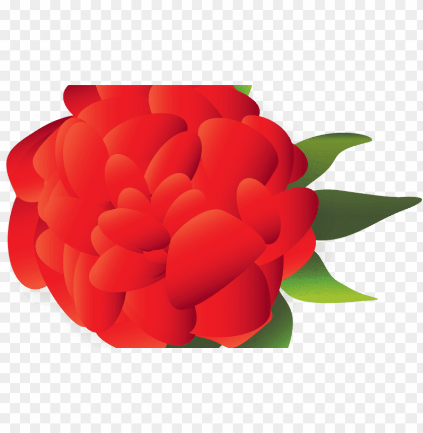 free PNG mexican flower PNG image with transparent background PNG images transparent