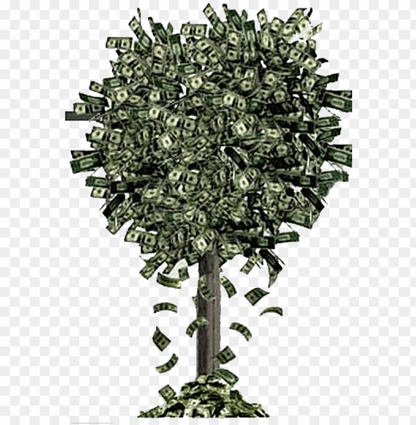 free PNG money tree falling money - money falling off trees PNG image with transparent background PNG images transparent