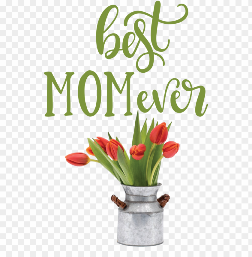 free PNG Mother's Day Mother's Day Floral design Valentine's Day for Happy Mother's Day for Mothers Day PNG image with transparent background PNG images transparent