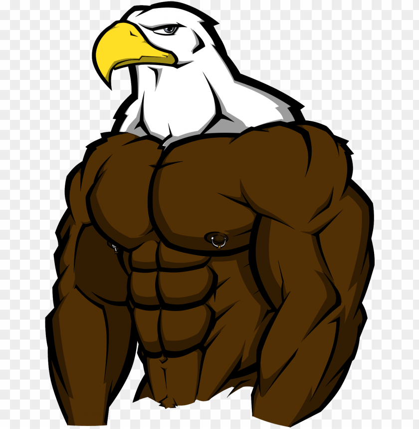 Muscle Bird Of Prey By Wolfoxokamichan Buff Eagle Png Image With Transparent Background Toppng