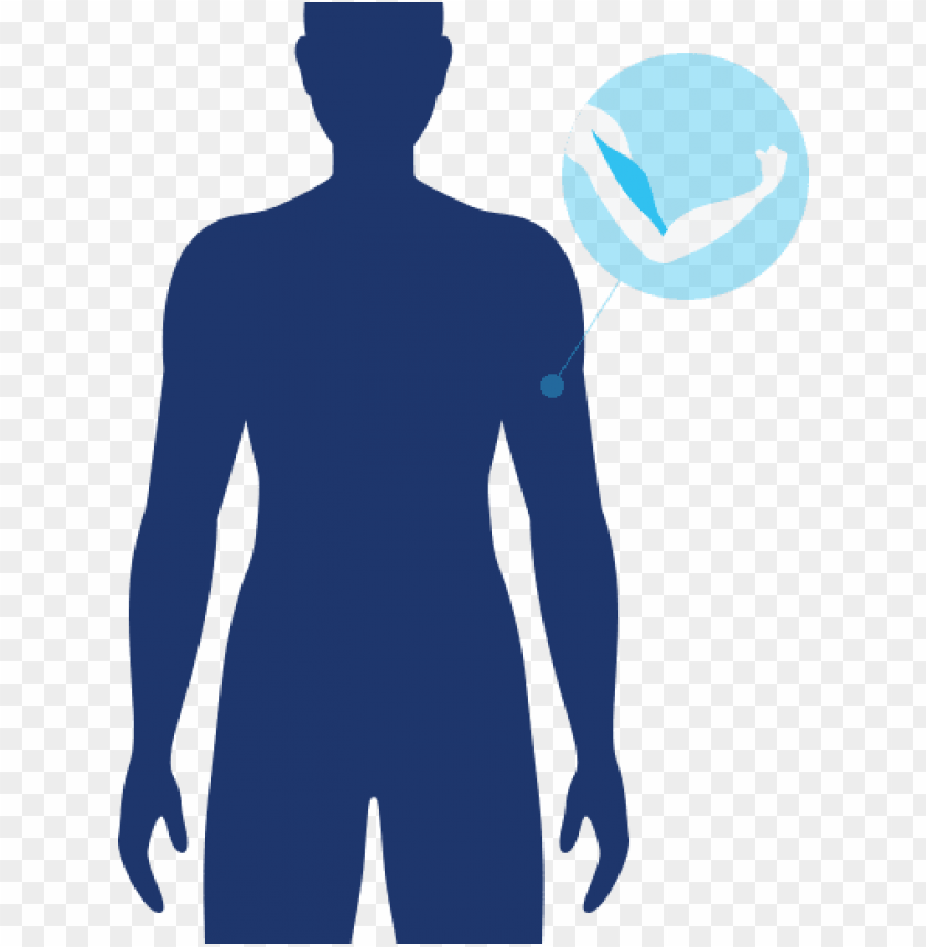 free PNG muscle icon muscle active icon - muscle loss icon png - Free PNG Images PNG images transparent
