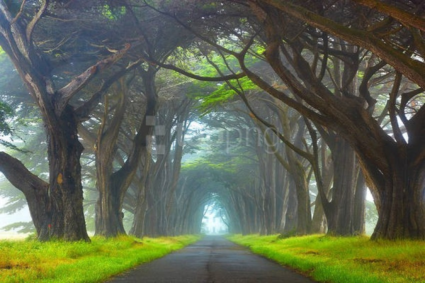 free PNG myst point reyes national seashore california wallpaper background best stock photos PNG images transparent