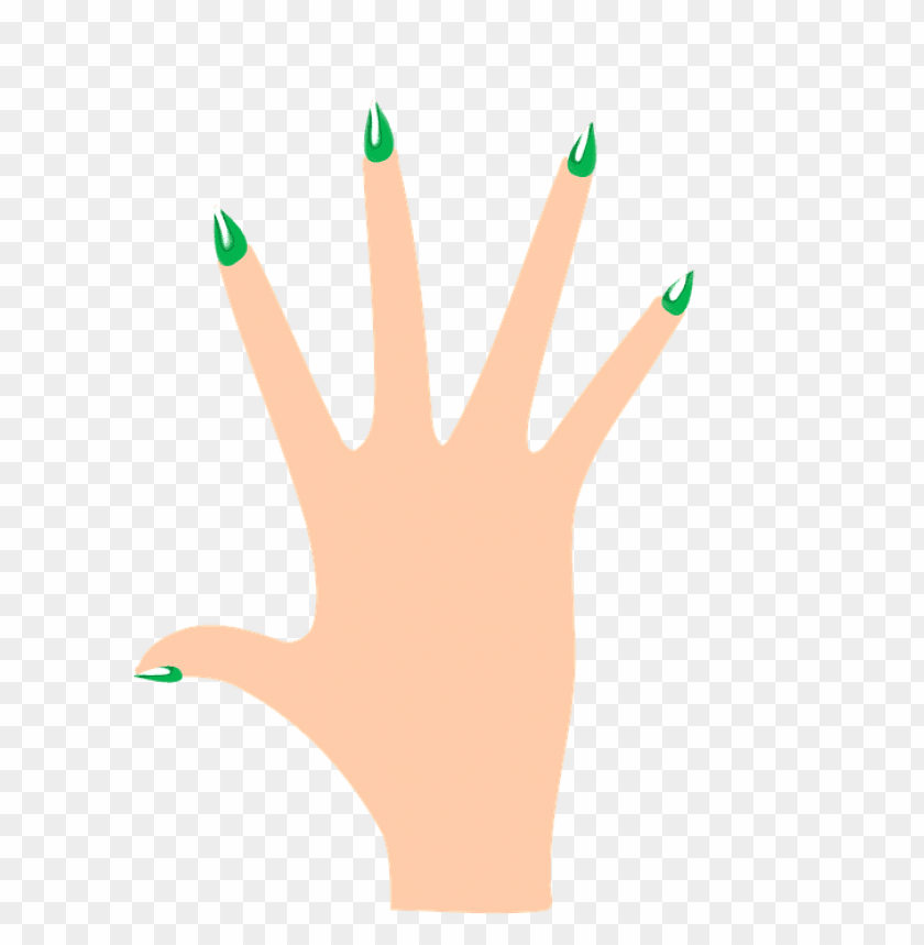 free PNG Download nails clipart png photo   PNG images transparent