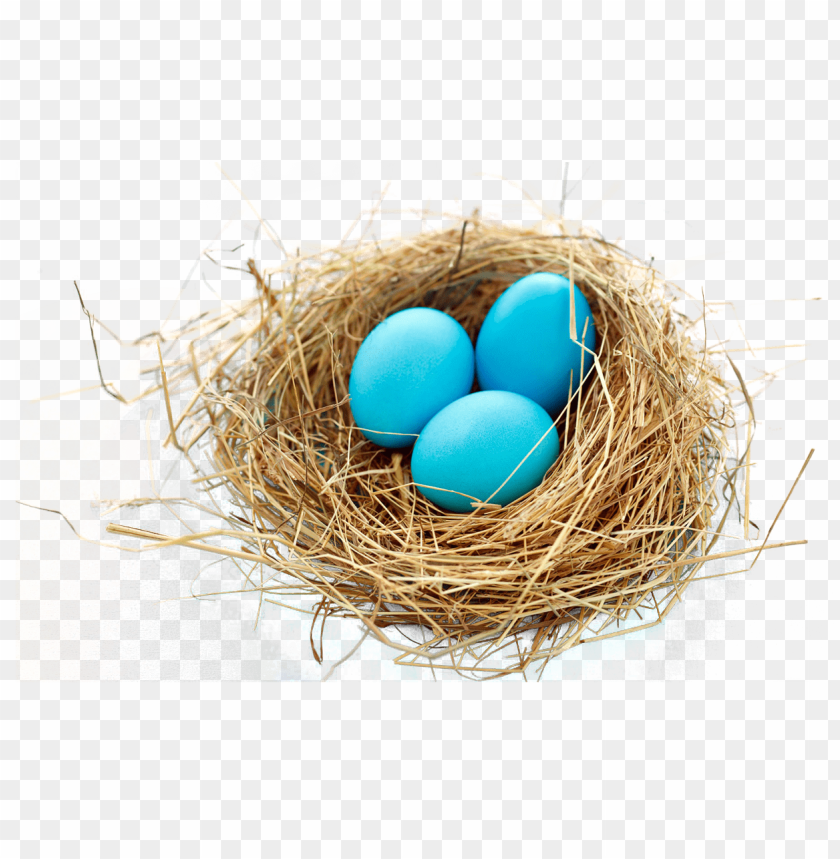 Download nest png images background@toppng.com