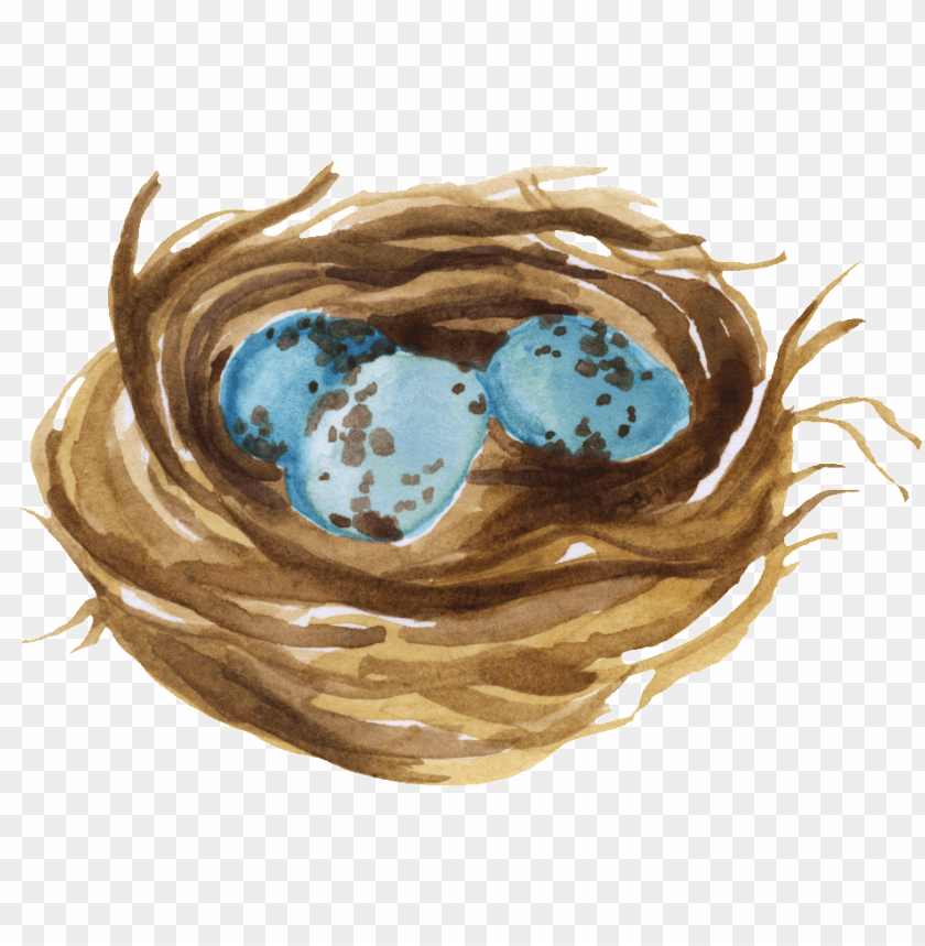 nest PNG image with transparent background@toppng.com