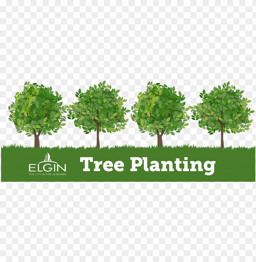 free PNG o to image - tree planting clip art PNG image with transparent background PNG images transparent
