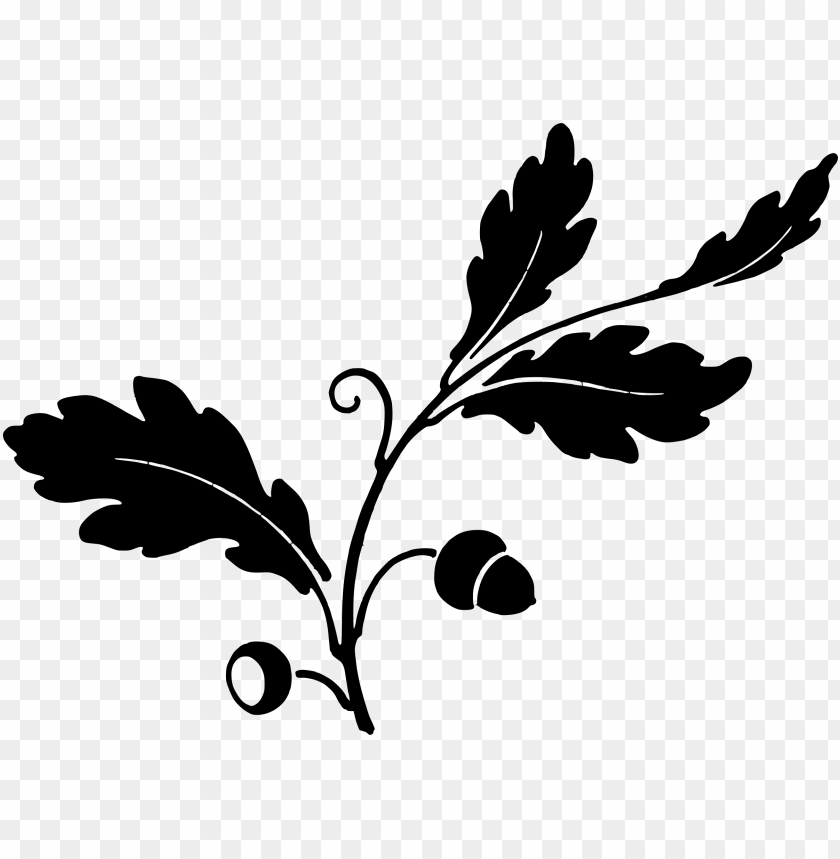 free PNG oak leaf silhouette PNG image with transparent background PNG images transparent