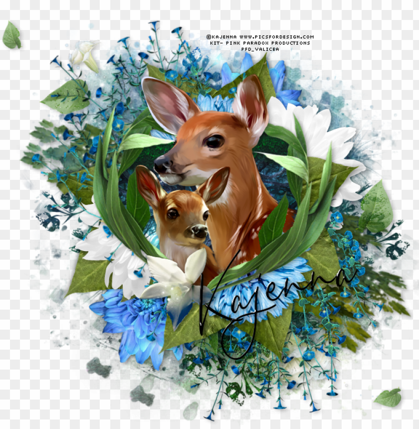 free PNG oh baby deer tag - roe deer PNG image with transparent background PNG images transparent