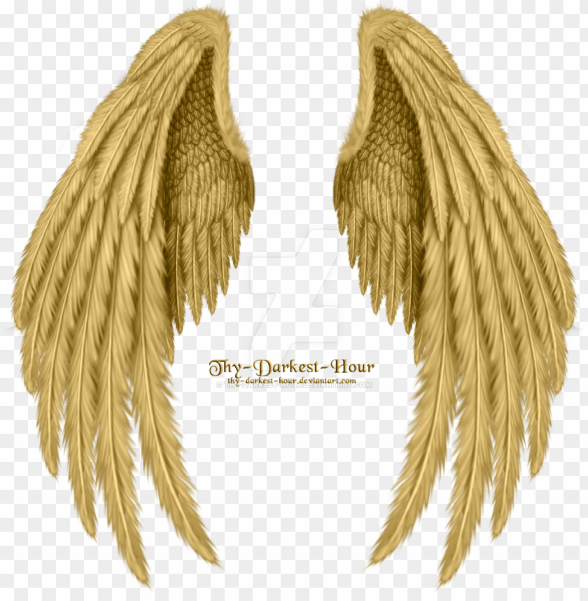 free PNG old angel wings png image download - golden angel wings PNG image with transparent background PNG images transparent