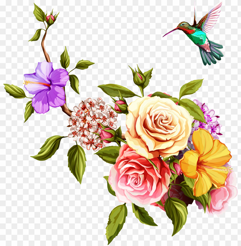 free PNG old rose hummingbird  birds and flowers border PNG image with transparent background PNG images transparent
