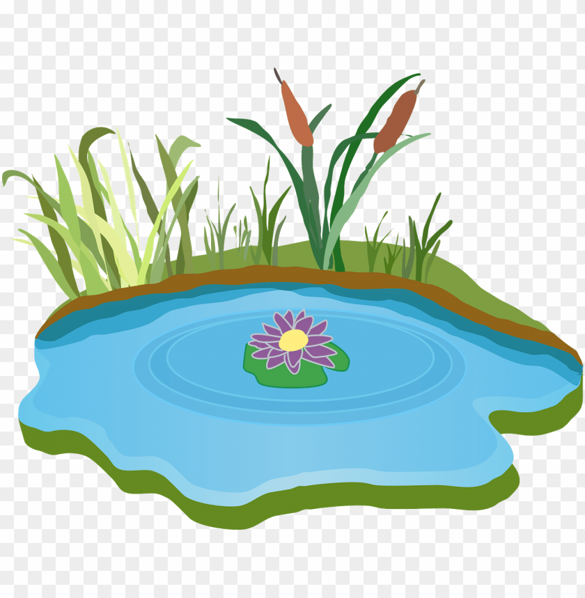 Ond Water Outdoor Free Clipart Pond Png Image With Transparent Background Toppng