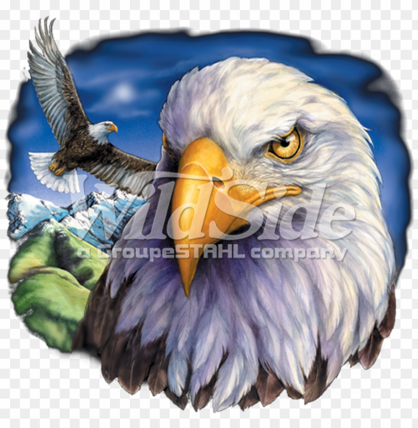one eagle flying & eagle head - american eagle flag PNG image with transparent background@toppng.com