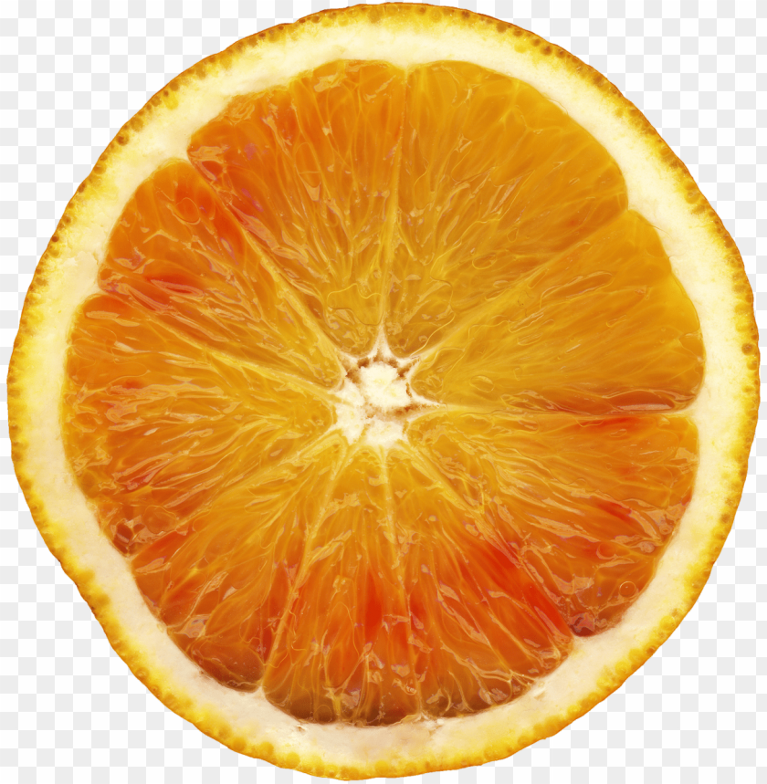free PNG Download orange | orange png images background PNG images transparent