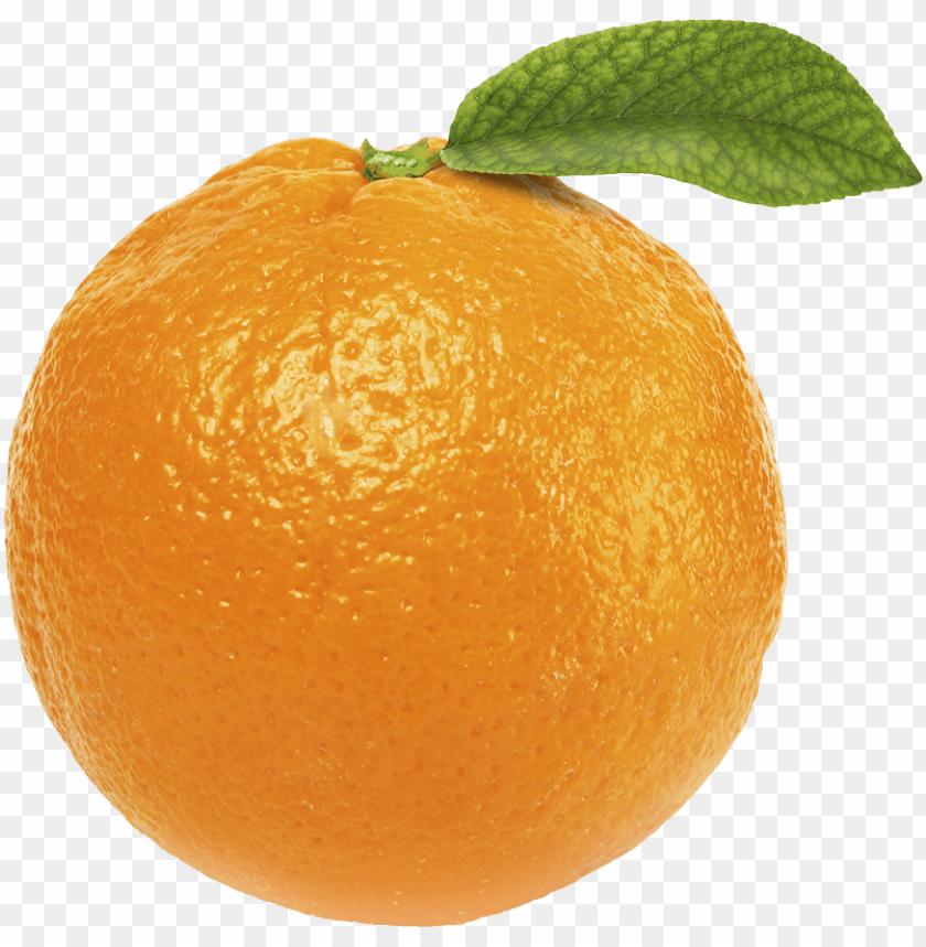 free PNG Download orange   orange png images background PNG images transparent
