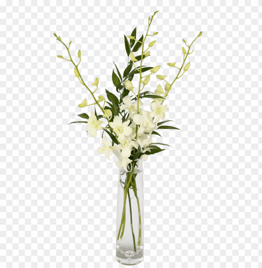 free PNG orchid flower bud vase PNG image with transparent background PNG images transparent